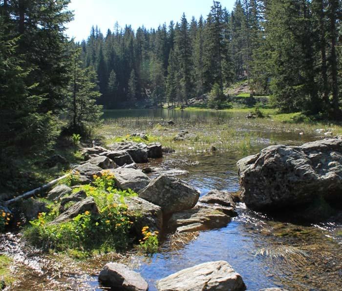 Lac Poursollet du camping lac de Laffrey