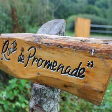 Promenade dans le camping a Grenoble